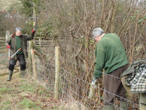 Clearing the existing Hedge